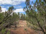 3248 Jeep Trail - Photo 11