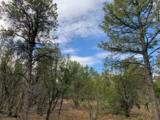 3248 Jeep Trail - Photo 2