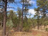 3248 Jeep Trail - Photo 3