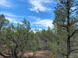 3248 Jeep Trail - Photo 4