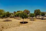 6337 Desert Cove Avenue - Photo 12