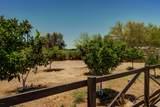 6337 Desert Cove Avenue - Photo 13