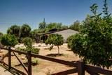 6337 Desert Cove Avenue - Photo 14