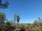 1807 Desert Mimosa Drive - Photo 1