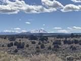 3747 Desert View Trail - Photo 2