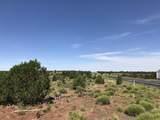 3747 Desert View Trail - Photo 4