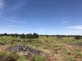 3747 Desert View Trail - Photo 6