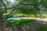 7656 Aster Drive - Photo 47