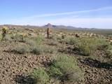 9423 Solitude Canyon - Photo 12