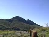 9423 Solitude Canyon - Photo 13