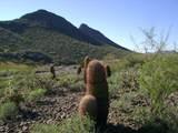 9423 Solitude Canyon - Photo 5