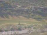 9423 Solitude Canyon - Photo 9