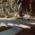 7829 Bonitos Drive - Photo 6