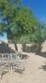 13549 Desert Flower Drive - Photo 18