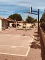 6530 Portia Circle - Photo 48