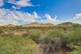 10333 Buckskin Trail - Photo 12