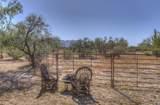 14129 Monterra Way - Photo 71