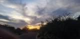 11409 Salero Drive - Photo 2