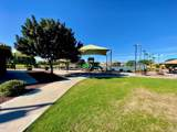 11825 Foothill Drive - Photo 47