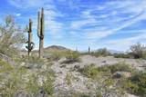 50150 Government Mine Road - Photo 1