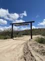 36625 Scenic Loop Rd Road - Photo 8