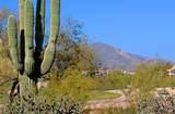 10066 Golf Trail - Photo 36