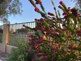11836 Tonopah Drive - Photo 6
