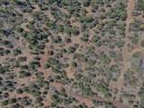 2.65 Acres Gardenia Ln - Photo 3