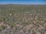 2.65 Acres Gardenia Ln - Photo 6