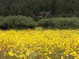 64 Apache County Rd 1323 - Photo 37