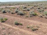 TBD Holbrook 38.75 Acres - Photo 1