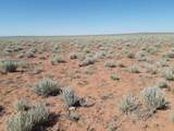TBD Holbrook 38.75 Acres - Photo 4