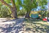 901 Tombstone Cyn/Mile Canyon - Photo 166