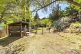 901 Tombstone Cyn/Mile Canyon - Photo 193
