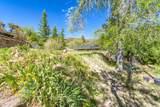 901 Tombstone Cyn/Mile Canyon - Photo 197