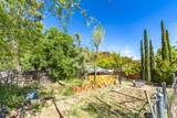 901 Tombstone Cyn/Mile Canyon - Photo 206