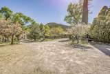 901 Tombstone Cyn/Mile Canyon - Photo 95