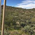 0 Elephant Butte Road - Photo 6