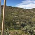 0 Elephant Butte Road - Photo 6