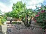 10579 Saddlehorn Drive - Photo 45
