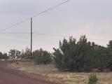 Show Low Pines Unit 10 Lot 296 - Photo 11