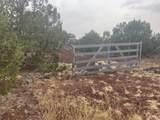 Show Low Pines Unit 10 Lot 296 - Photo 9