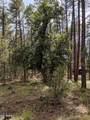 21B Wild Oak Drive - Photo 10