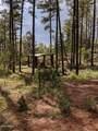 21B Wild Oak Drive - Photo 13