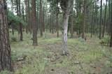 21B Wild Oak Drive - Photo 3
