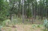 21B Wild Oak Drive - Photo 4