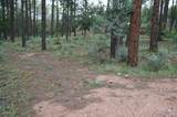 21B Wild Oak Drive - Photo 5