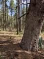 21B Wild Oak Drive - Photo 9