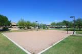 9865 Piedra Drive - Photo 62