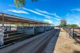 4125 Pinnacle Vista Drive - Photo 10